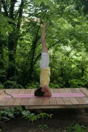 Sirsasana in the woods