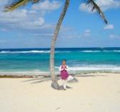 Bahamas tree1