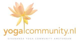 YC logo, website