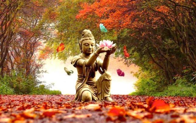 autumn-equinox-qigong.jpg
