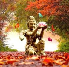 autumn-equinox-qigong