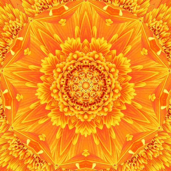 flower-mandala-michelle-smith.jpg
